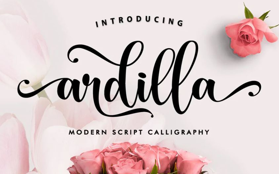 Ardilla Font Family Free Download