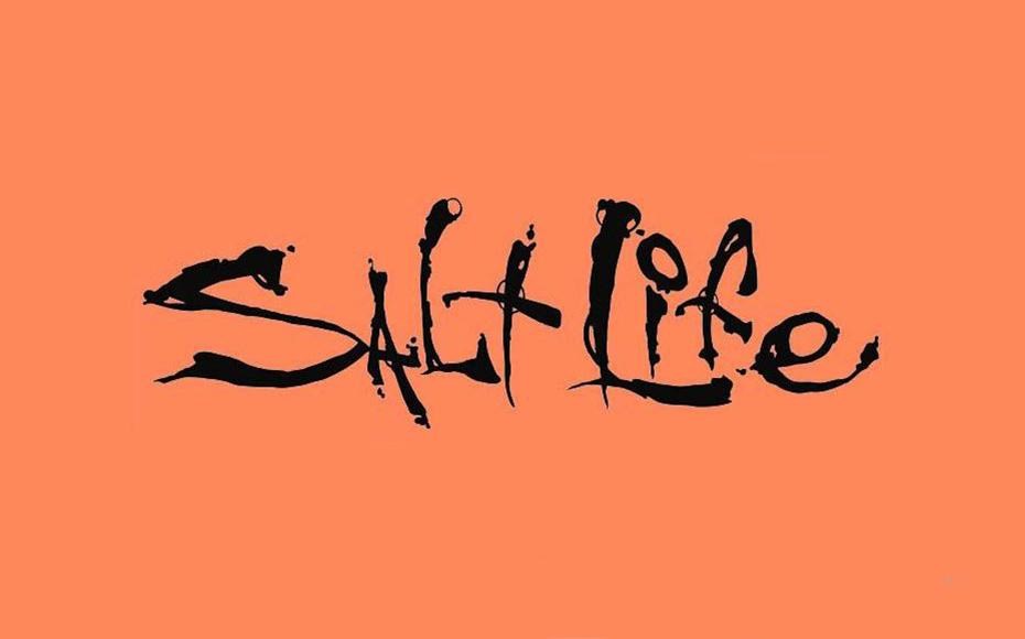 Salt Life Font Family Free Download