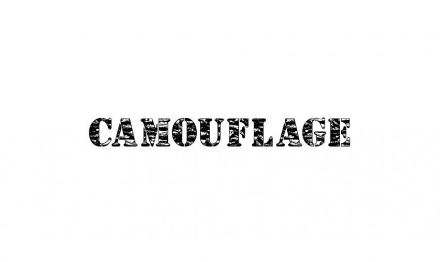 Camouflage Font Free Download