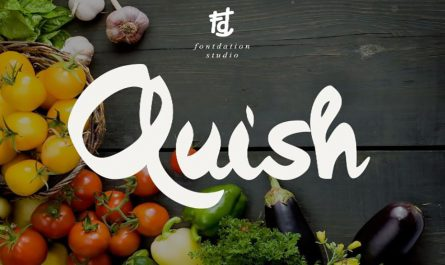 Quish Font Family Free Download